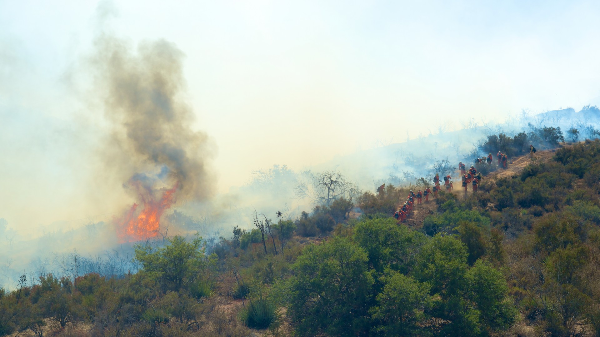 Fighting Fires: How Strategic and Financial Plans Can Help